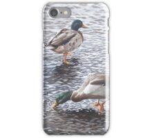 two mallard ducks standing in water iPhone Case/Skin