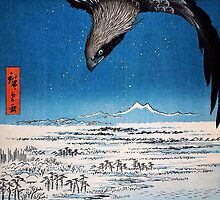 eagle over 100000 acre plain at susaki fukagawa juman tsubo by Adam Asar