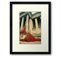 Poppies at St Georges Hall Framed Print