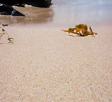 Just A Photograph Of Sand And Rocks by Robert Phillips