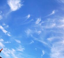 Playtime With God's Sky by Robert Phillips