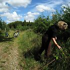 Blackberry picking - Gram, Denmark by John Kleywegt