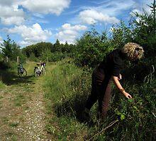 Blackberry picking - Gram, Denmark by John Kleywegt