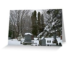 Nearly Winter In Southern Wisconsin, 2012.  Greeting Card