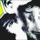 CHIMPANZEE POP-ART TWO by OTIS PORRITT