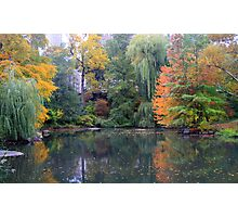 Pond in the city Photographic Print