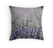 Lavender Pop Throw Pillow