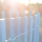 Purple Fence  by BootsandTea