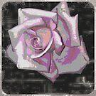 rose by Hotlilmamax6