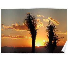 Autumn sunset in the desert Poster