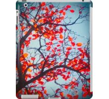 Red And Blue Autumn iPad Case/Skin