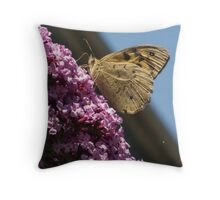 Butterfly on Buddleja davidi butterfly-bush 20121210 4490 Throw Pillow