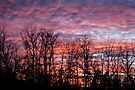 Winter Sunset - As Is by barnsis