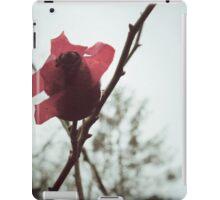 Rosehip iPad Case/Skin