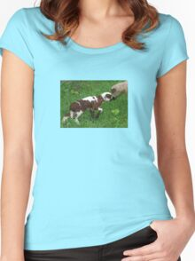 Cute Brown and White Lamb with Ewe Women's Fitted Scoop T-Shirt