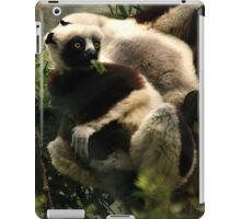 Snacking Sifaka iPad Case/Skin