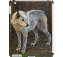 Wandering Wolf iPad Case/Skin