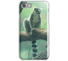 Ring-Tailed Lemur Lookout iPhone Case/Skin