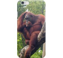 Oh Wise Orangutan iPhone Case/Skin
