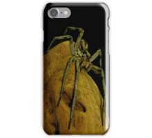 Spooky Spider iPhone Case/Skin