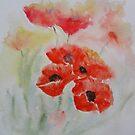 soft poppies by katymckay