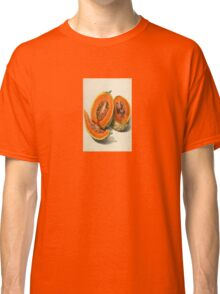 Vintage Vector Style Thanksgiving Pumpkin Slices Classic T-Shirt
