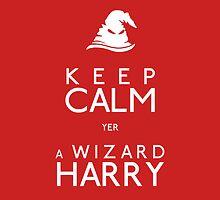 Yer A Wizard Harry by Sherlock-ed