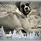 Seasons Greetings by Linda Bennett
