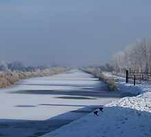 Frozen Canal by DES PALMER