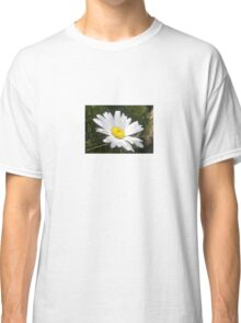 Close Up of a Margarite Daisy Flower Classic T-Shirt