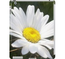 Close Up of a Margarite Daisy Flower iPad Case/Skin