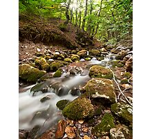 Flowing down Photographic Print