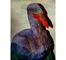 Housebreaking Heron Photographic Print