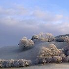 Frosted Trees by Jacqueline Longhurst