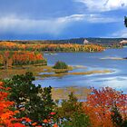 Fall Colors, Au Sable National Scenic River by DArthurBrown