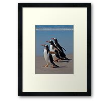 The Intrepid Trio Framed Print