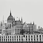 The Hungarian parliament, Budapest, Hungary by Pavel Gospodinov