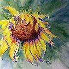 Sunflower Splash by Anne Guimond