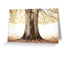 The Tree of Light Greeting Card