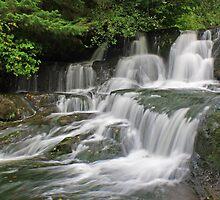 Alsea Falls, Oregon by DArthurBrown
