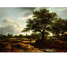 Jacob van Ruisdael   Landscape with a Village in the Distance (1646) Photographic Print