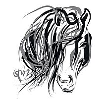 Hair and horse Photographic Print