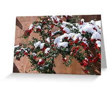 Snow-tipped berries Greeting Card