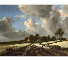 Jacob van Ruisdael   Wheat Fields (c. 1670) Photographic Print