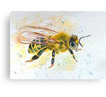Beautiful Bee Canvas Print