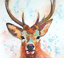 Beautiful Stag by Croftsie