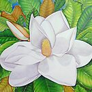 Magnolia Blossom by joeyartist