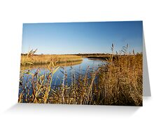 Autumn in Snape Greeting Card