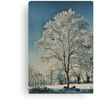 Ice Sculpture Canvas Print