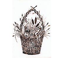 The Goodies Basket Photographic Print